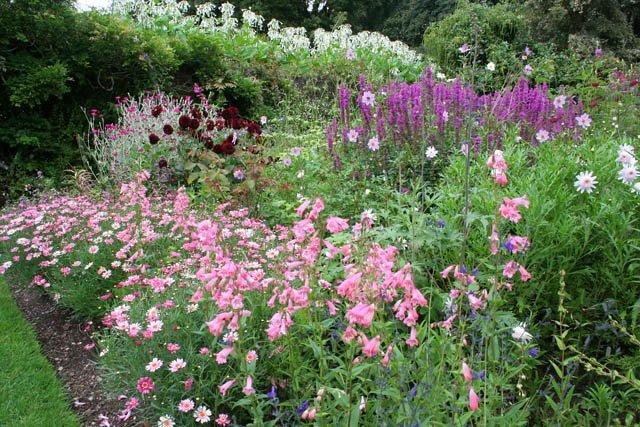 garden-maintenance-hunstanton-norfolk