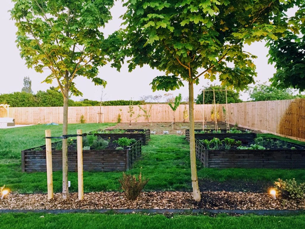 A kitchen garden from 4 large woven steel planters, beyond that is a newly planted wild flower meadow and orchard