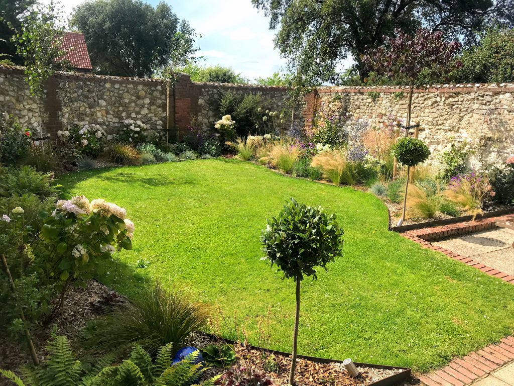 Another happy customer - this small walled garden in Thornham with grasses, steel edging, bay tree standards and overseeded lawn - Garden desiged by and maintained by Louise